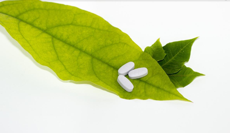 příroda a léky