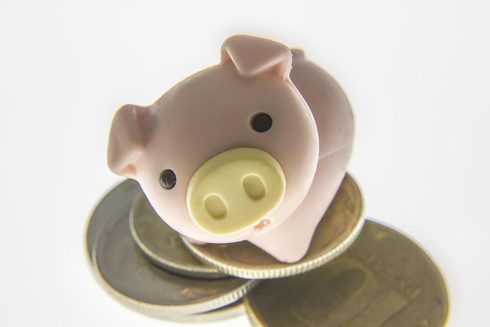 prasátko na mincích